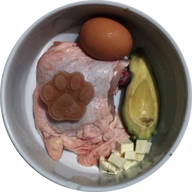 Plato de dieta BARF para perros hecho por gizcan